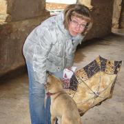 Крит. Монастырь Аркади (Arkadi Monastery). Монастырская собака