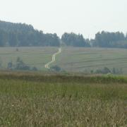 Караван-Инино. Дорога в полях